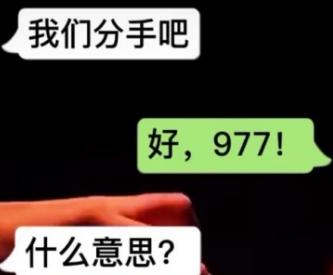 抖音上977是什么意思什么梗 数字977含义介绍
