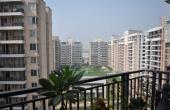 卢迪亚纳区房地产市场开始回暖